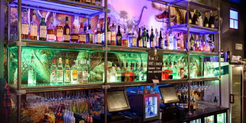 Bardisk Underbara Bar